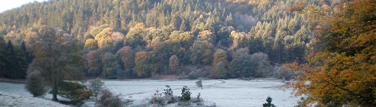 Frosty autumn morning at Lower Beach